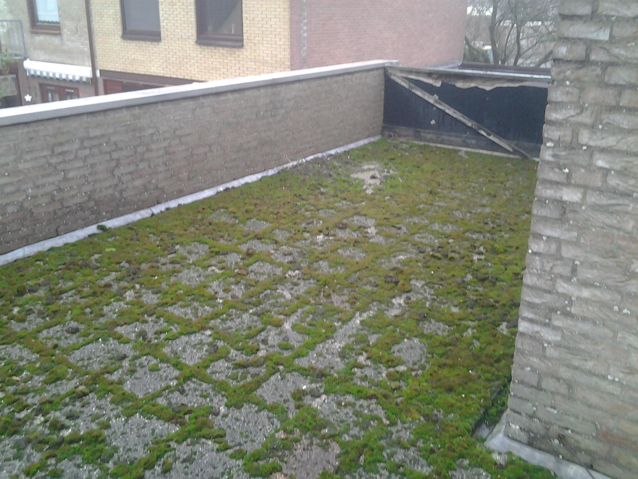 Maak uw dak regelmatig schoon